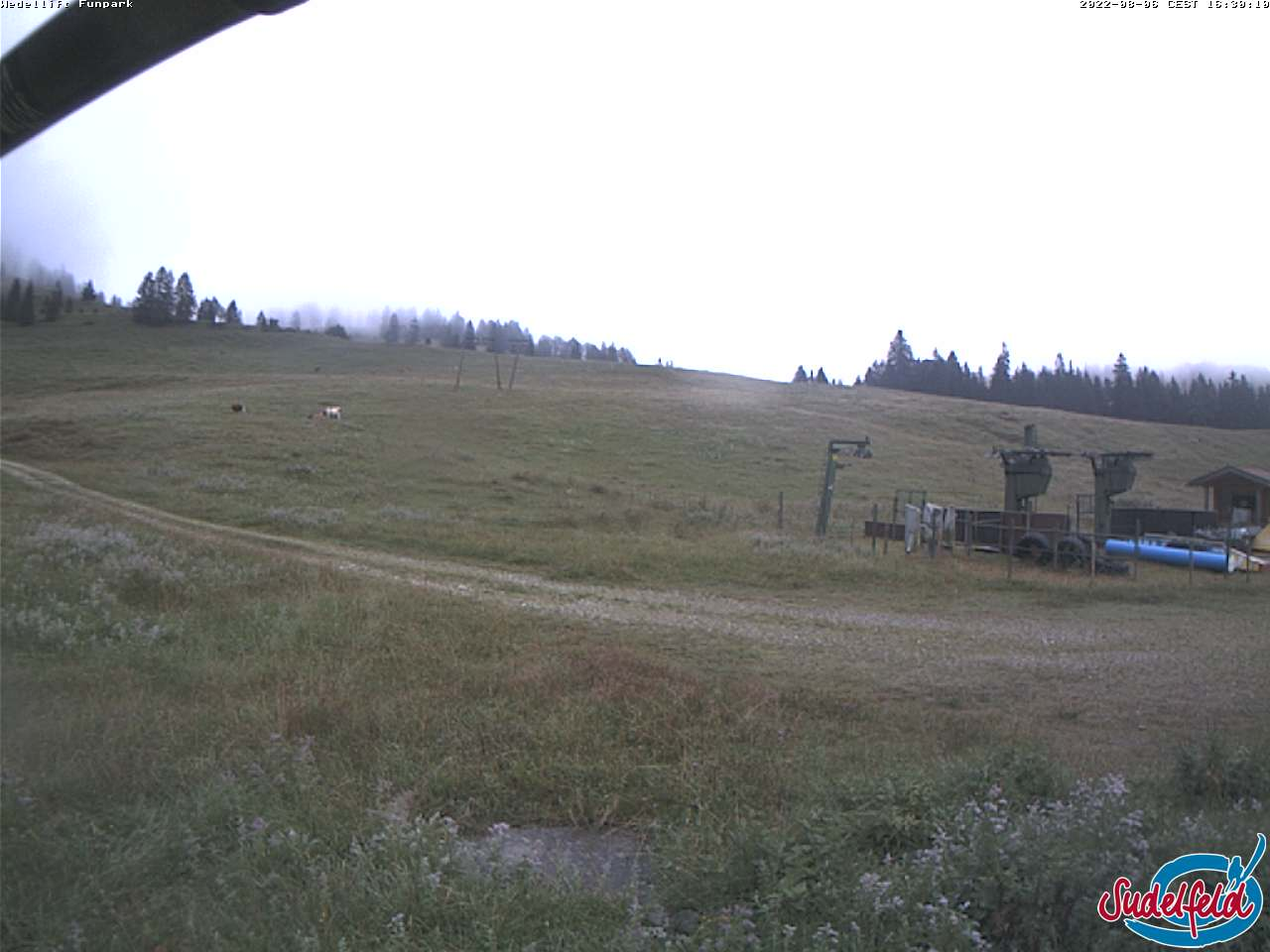 Livebild Webcam