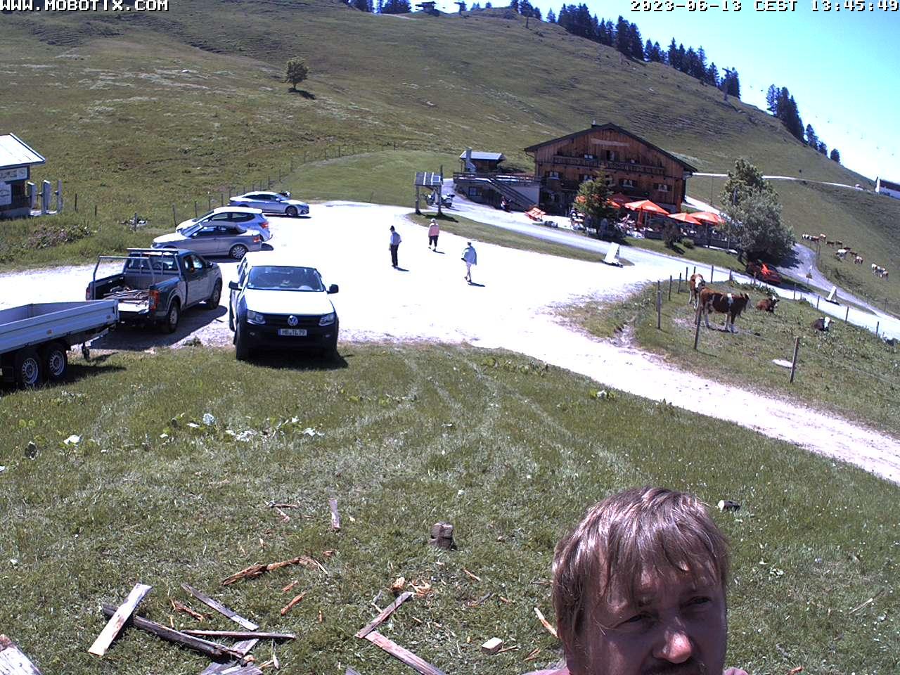 Livebild Webcam